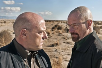 TV-Breaking Bad-Norris